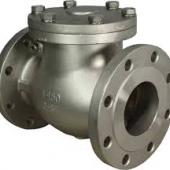 NON RETURN ( NRV ) VALVES DEALERS IN KOLKATA. Фотография 22441
